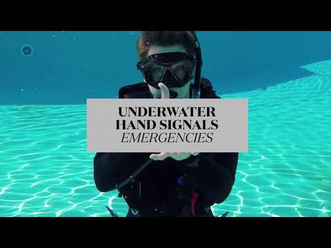 Scuba Diving Hand Signals for Emergencies