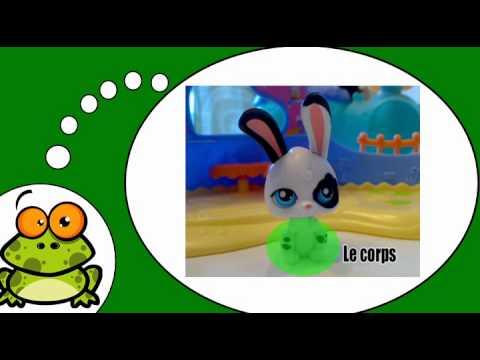 Frans leren = De huisdieren # Het konijn