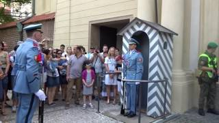 Changing of the Guard at Prague Castle (2016)