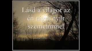 Sonata Arctica - Shamandalie (magyarul)