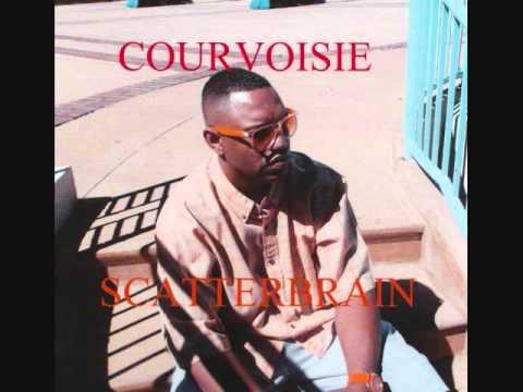 Courvoisie Scatterbrain