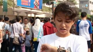 NET24 - Komunitas Sugar Glider Jakarta
