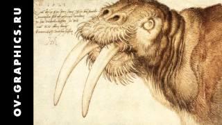 Чем рисовал Леонардо да Винчи
