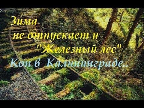 """""""Железный лес"""".Калининград.В поисках чего-то..Просто прогулка.."""