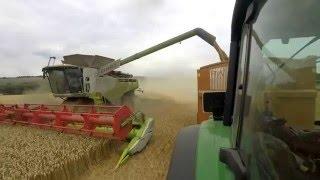 Mentmore Park Farms Harvest 2015 UK