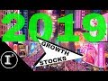 BEST GROWTH STOCKS FOR 2019 🍾🎉| HOW I'M INVESTING MY $12,000 INTO MY SELF DIRECTED ROTH IRA