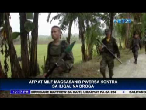 AFP and MILF to join forces in war against illegal drugs
