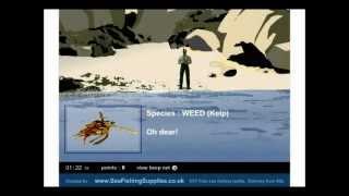 Desktop Fishing Game
