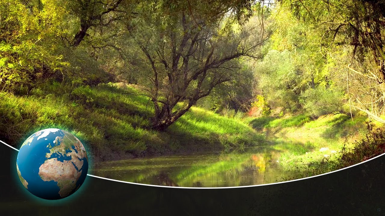 The Sava Floodplains - Croatia's secret paradise