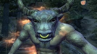 Oblivion - Minotaur Lord (EPIC BATTLE)