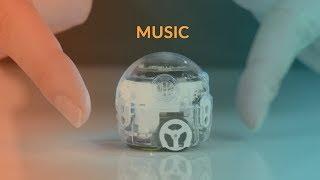 Evo's Tricks: Music