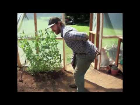 hqdefault - Gardening And Back Pain