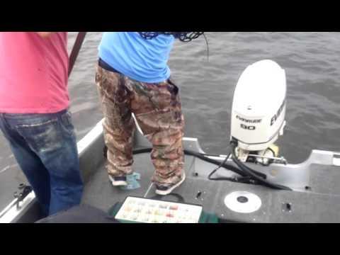 Dicks Catch Fish