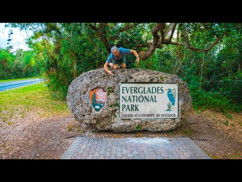 Everglades National Park | Is it worth the visit?