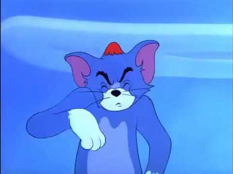Tom and jerry nit witty kitty