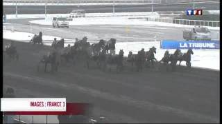 PMU , french horse racing results Theme 2 ( TF1 / 2009 )