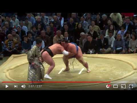 Let's Examine And Learn From Sumo Wrestling (Viewer Request)