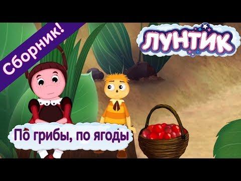 По грибы 🍄 по ягоды 🍓 Лунтик 🍒 Сборник мультфильмов