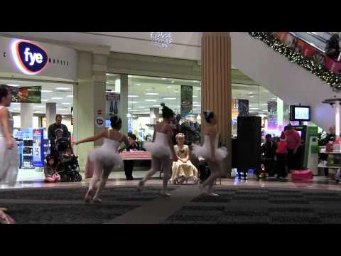 2014 - 18 Days of Christmas at Stratford Square Mall