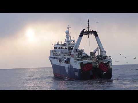 Южно-Курильскому рыбокомбинату 70 лет