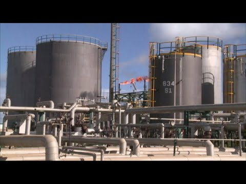 Oil price tumbles to lowest level of year
