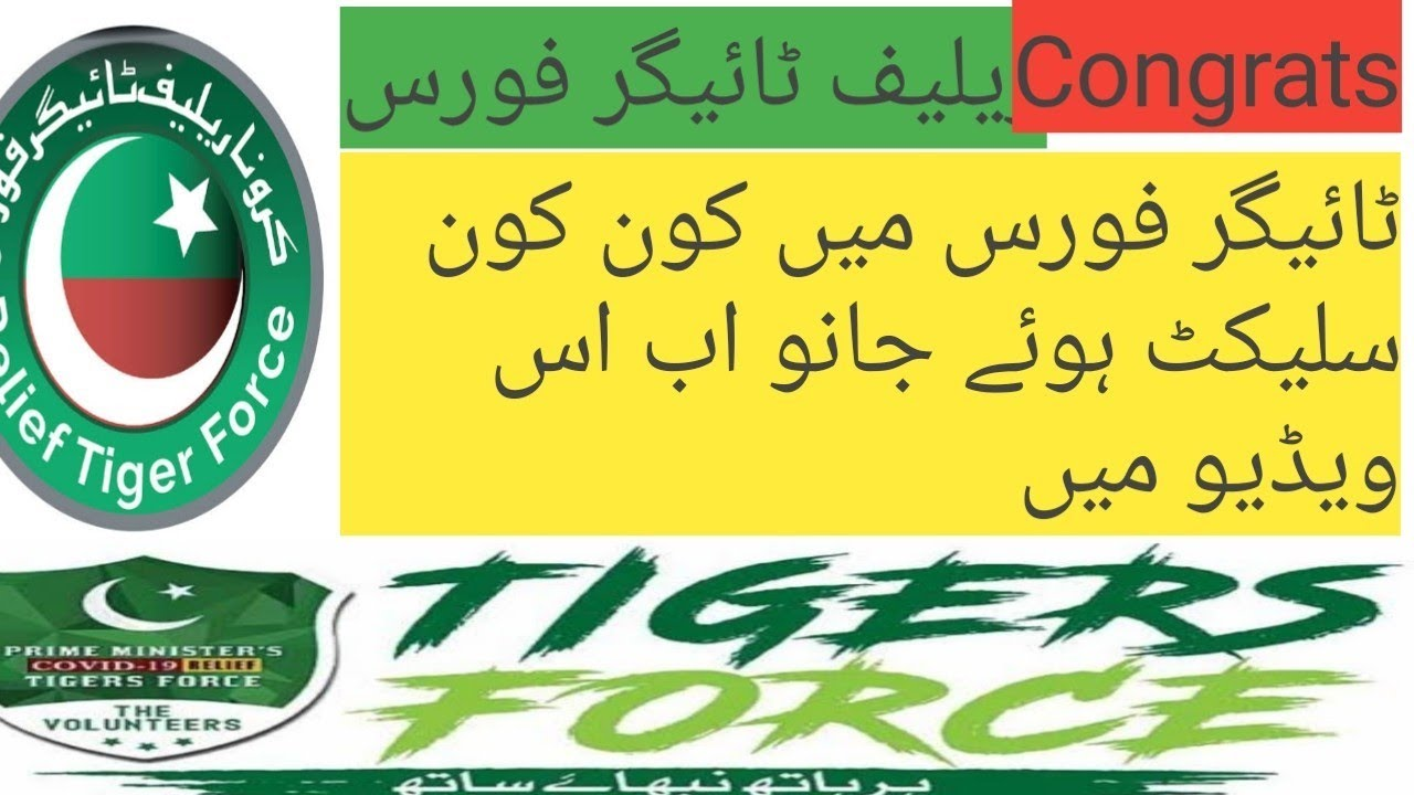 Tiger force k liye selection / selected in tiger force/ check status now