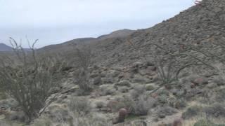 Borrego Springs: Glorietta canyon loop