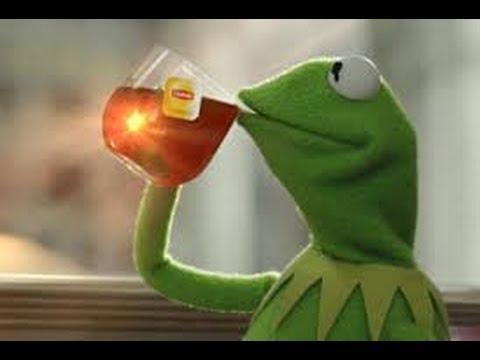 Kermit the frog meme blank - photo#20