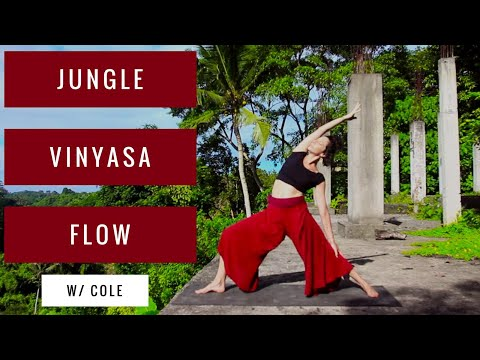 Vinyasa Flow in the Jungle with Cole Chance Yoga