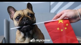 Skyscanner celebrates Chinese Language Day | How to learn to speak Chinese