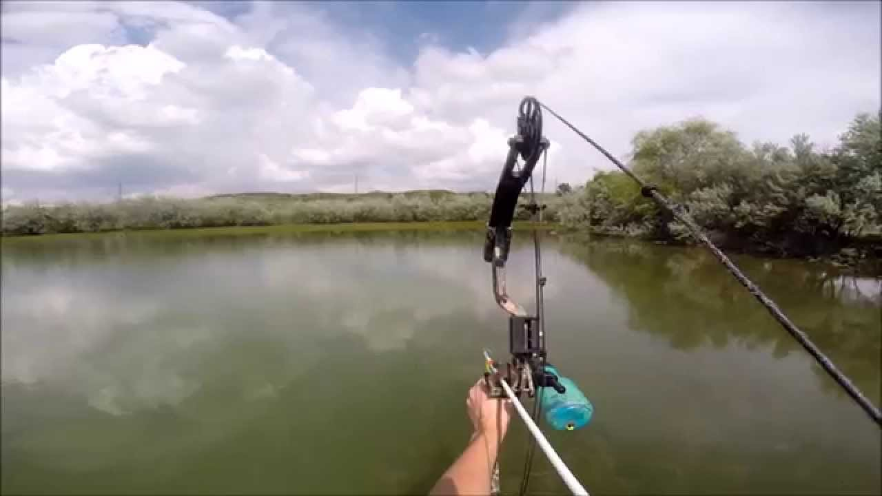 Bow Fishing Videos for the best bow fishing for beginners & youth