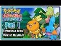 Pokemon Omega Ruby & Alpha Sapphire - Part 1: Littleroot Town | Picking Starters!  (Webcam/English)