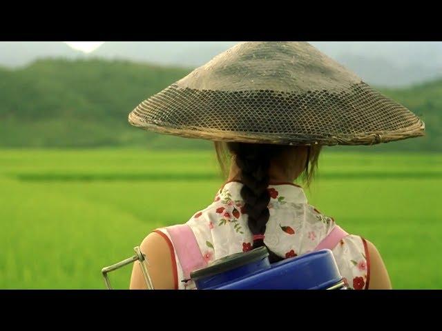 【越哥】这才是中国电影最大的遗珠,国内票房几乎为零,在日本却有8亿票房!