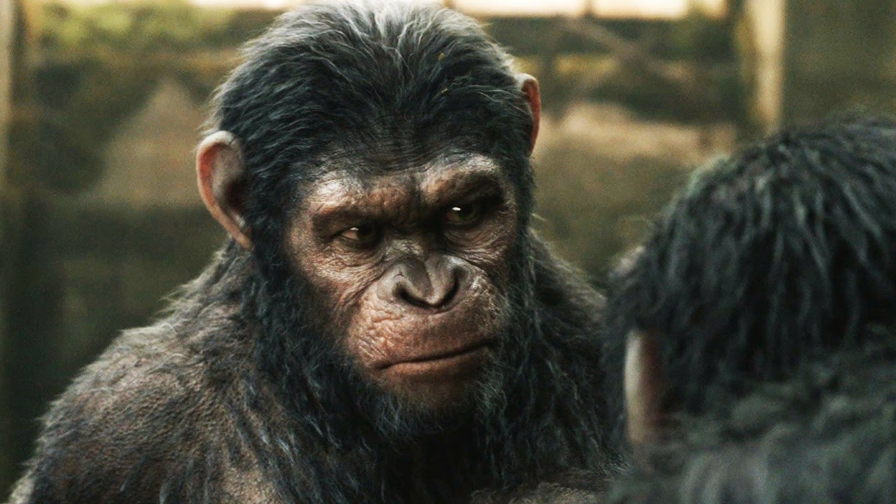 Dawn of the Planet of the Apes: Becoming Caesar - YouTube