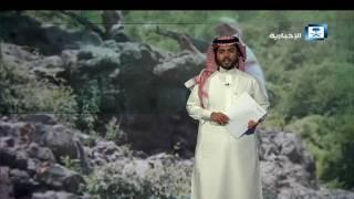 توالي انتصارات الشرعية.. ومستقبل اليمن الاقتصادي