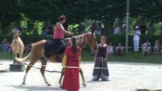 Fete medievale Lusignan