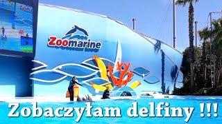 Podróż z przyczepą kempingową - Zwiedzamy Park Rozrywki - Zoo Marine