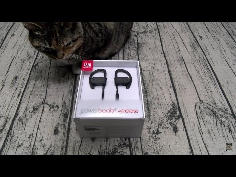 Powerbeats 3 Wireless In-Ear Headphones