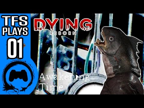 DYING: REBORN | PART 1 | TFS Plays