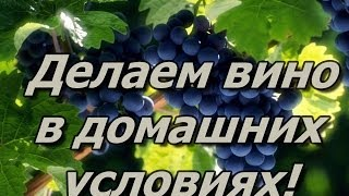 Делаем Вино в Домашних условиях