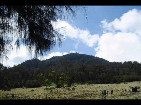 Boomerang - Nyanyian Lembah Hijau