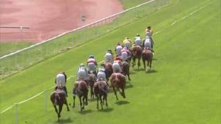 Vidéo de la course PMU PRIX DE DRESDE