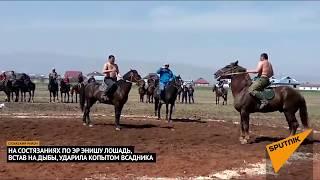 Конь ударом копыта выбил всадника из седла во время соревнований в Кыргызстане