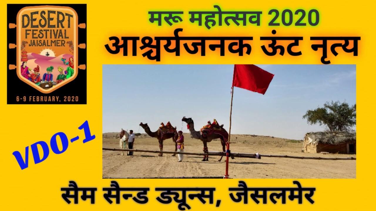   AMAZING CAMEL DANCE VDO  DESERT FESTIVAL 2020  SAM SAND DUNES  JAISALMER  RAJASTHAN  VDO-1  