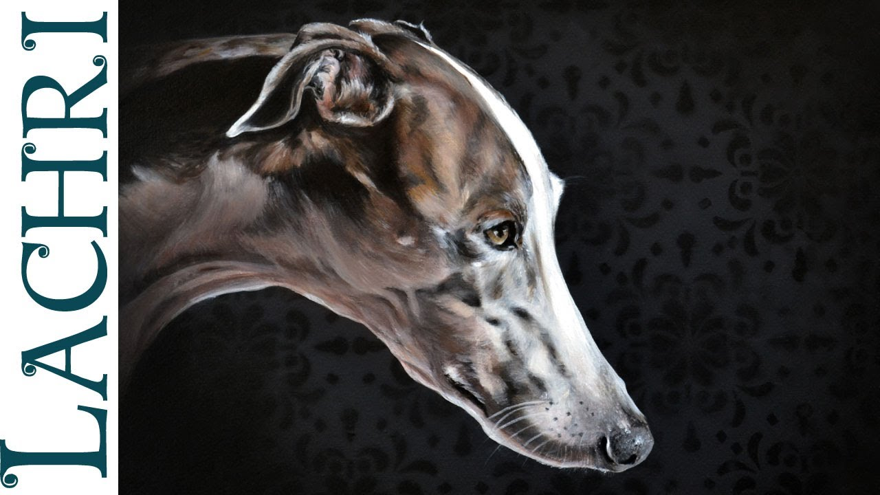 Time Lapse Greyhound In Oil Over Acrylic Paint ,