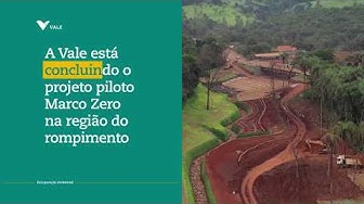 Prestação de Contas: Como estamos recuperando o meio ambiente em Brumadinho e região?