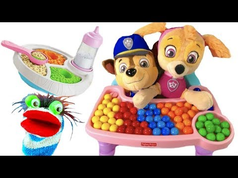 Video for Children  - Paw Patrol Babies Skye Chase