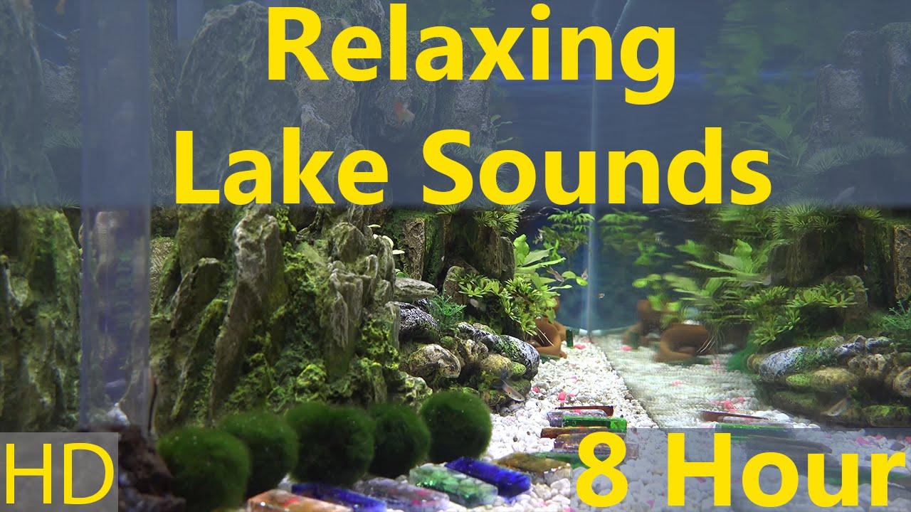 Relaxing Lake Sounds 8 Hours Somewhere Aquarium Hd 1080p