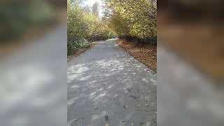 Payiz feslinin gozelliyi