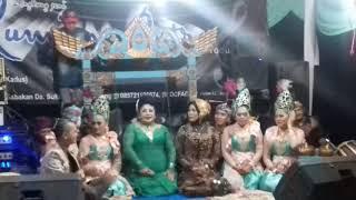 Gambar cover Kembang gadung